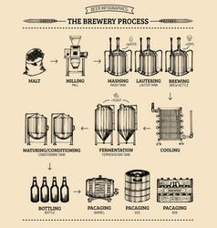 Beer infographics vector