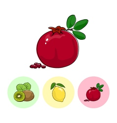 Fruit Icons Pomegranate Lemon Kiwifruit vector
