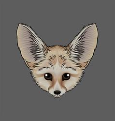 head of fox fenech portrait of wild animal hand vector image