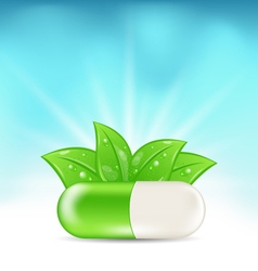 Natural Medical Pill with Green Leaves vector image