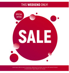 sale poster with rounds and bubbles vector image