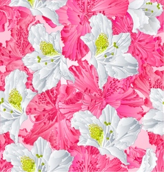 Seamless texture rhododendron pink and white vector