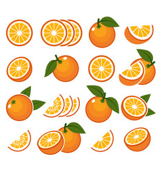 fresh orange fruits emblems vector image