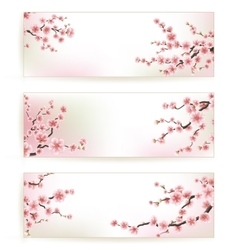 Set of Beautiful Floral Banners EPS 10 vector image vector image