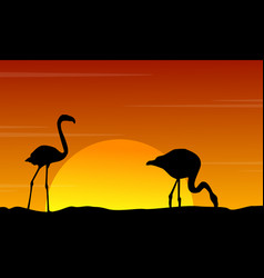 silhouette of flamingo at sunset beauty landscape vector image