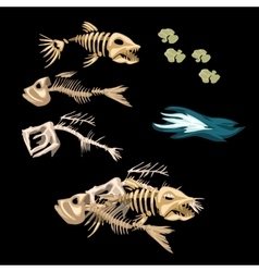 Skeletons fish track and other items vector image vector image