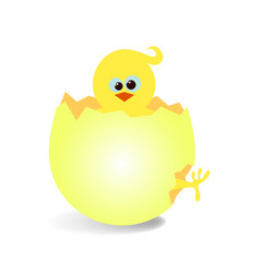 chicken5 vector image