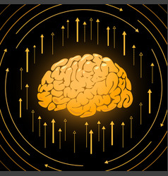 Golden brain smart mind vector