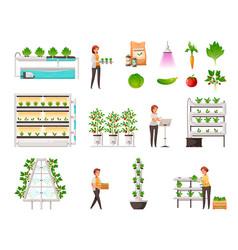 Greenhouse farming set vector