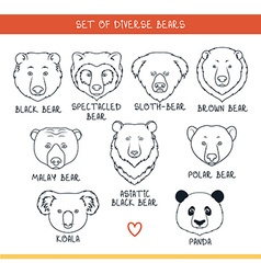 Set 9 muzzles bears handmade in linear style Bear vector image