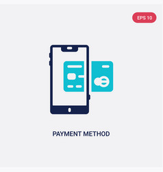 Two color payment method icon from digital vector