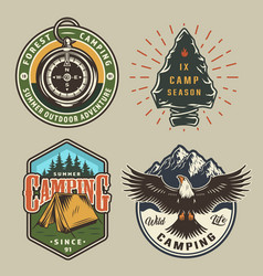 vintage camping colorful emblems vector image