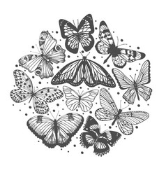 composition with hand drawn butterflies vector image vector image