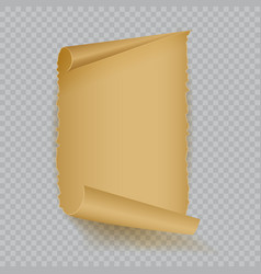 empty realistic sheet of parchment paper vector image