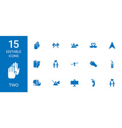 15 two icons vector