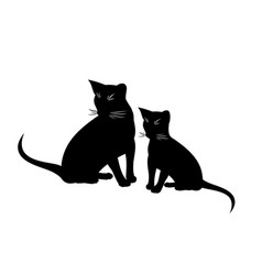 Abyssinian cat and kitten isolated vector