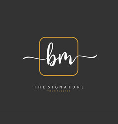 B m bm initial letter handwriting and signature vector