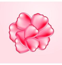 Beautiful red rose petals vector