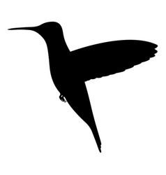 black silhouette hummingbird vector image