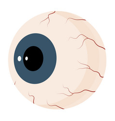 Eyeball round part eye within eyelids and vector