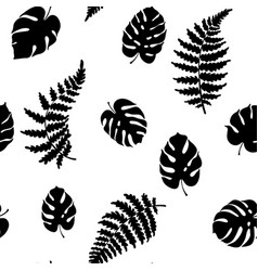 fern and monstera vector image