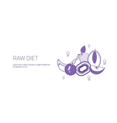 Raw food diet healthy meal concept template web vector