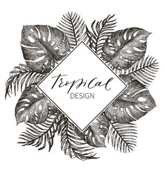 Tropical palm leaves jungle round vector