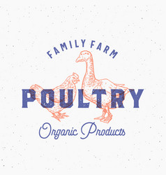 family farm organic fresh poultry abstract vector image