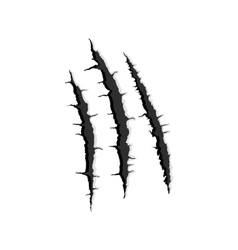 Three vertical trace of monster claw vector