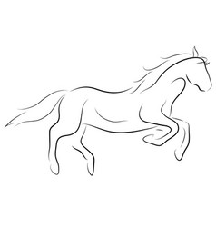 Black line horse on white background icon vector