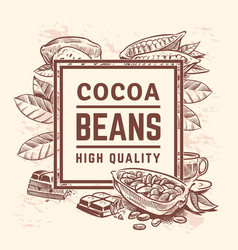 Cocoa plant with leaves cacao tree background vector