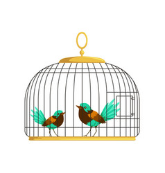 Couple beautiful birds with colorful lush tails vector