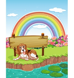 Dog and rainbow vector image