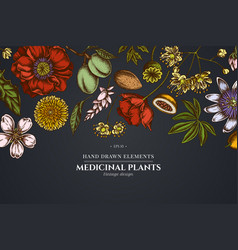 floral design on dark background with almond vector image