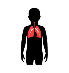 Isolated lung vector
