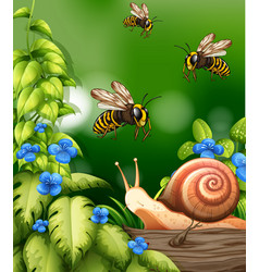 Nature scene with bees and snail vector