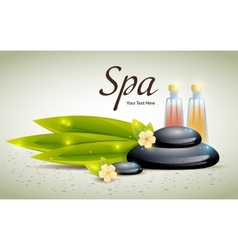 Spa Background of Black Pebble and Bamboo Leaves vector image