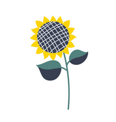 sunflower isolated cartoon vector image