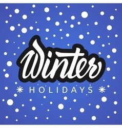 Winter holidays Hand lettering vector image