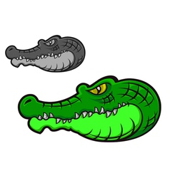cartoon crocodile head vector image
