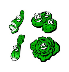 cucumber brussels sprouts celery lettuce vector image