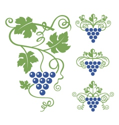 grapes icon set vector image vector image