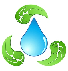 recycling water drop with leaf vector image vector image
