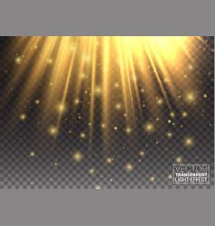 lighting effect golden lights enhance your vector image vector image