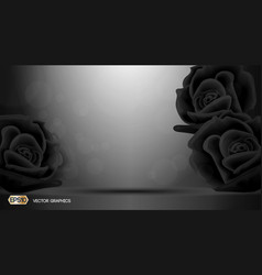 Black roses flowers fragrance for ads dazzling vector
