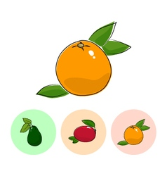 Fruit Icons Grapefruit Mango Avocado vector