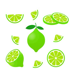 Lime with green leaves slice citrus isolated on vector