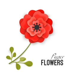 Paper flower lush red peony on small stem with vector