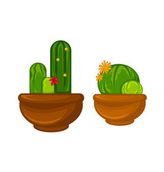 pots plants with flowers and leaves set vector image