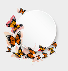 Beautiful butterfly background and gift card vector image vector image